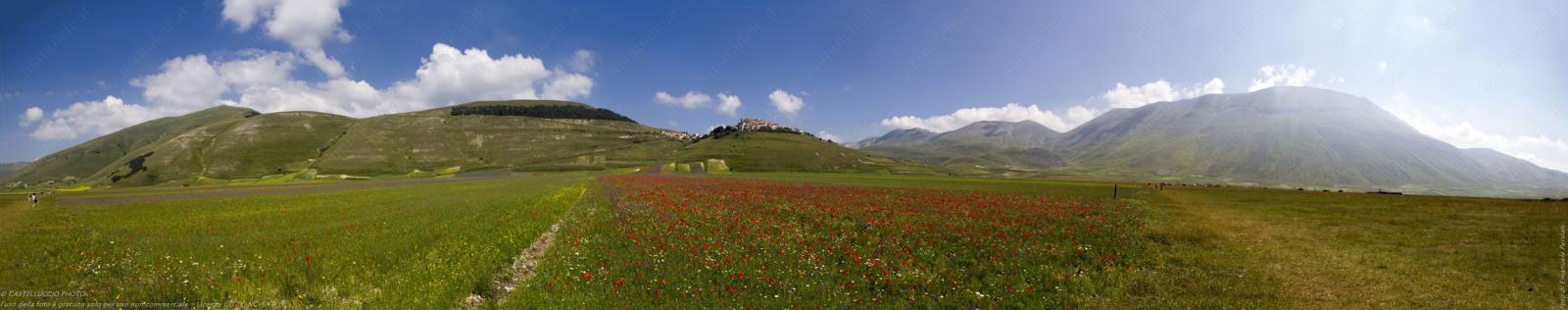 Panorama della fioritura a Castelluccio